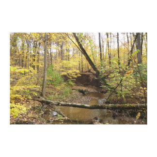Autumn Forest Stream Gallery Wrap Canvas