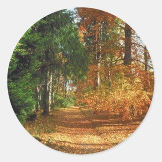 Autumn Forest Walk Classic Round Sticker