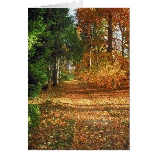 Autumn Forest Walk Greeting Card