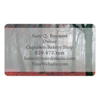 Autumn Forest with Red Leaves.beautiful landscape Business Card