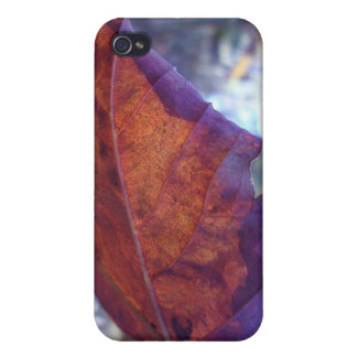 autumn forestleaf cover for iPhone 4