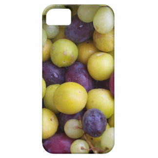 Autumn Fruits Photograph, Plums Grapes Greengages iPhone SE/5/5s Case