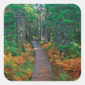 Autumn Fundy New Brunswick Square Sticker