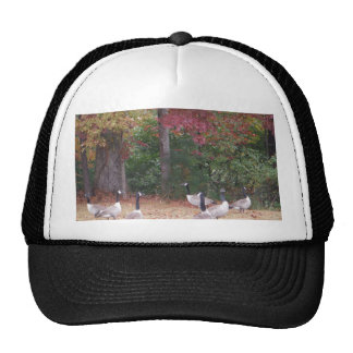 Autumn Geese with Red and Orange Fall Leaves Mesh Hats