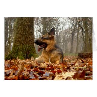 Autumn German Shepherd Card