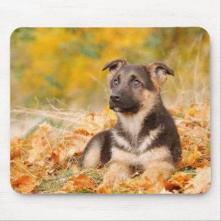 Autumn German shepherd dog puppy Mouse Pad