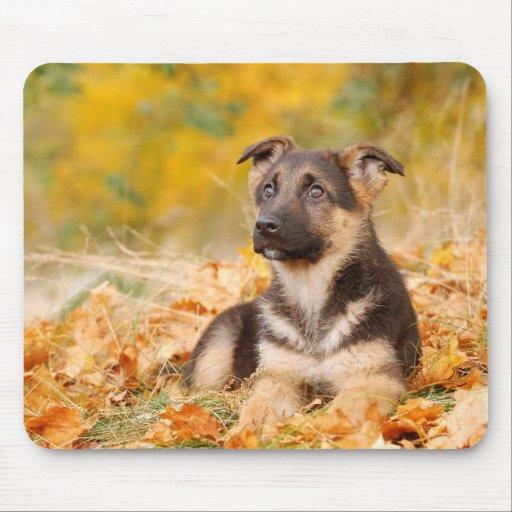 Autumn German shepherd dog puppy Mousepad