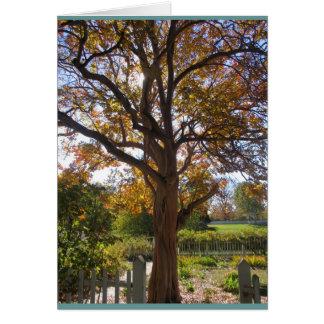 Autumn Glory Card