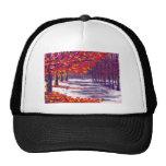 Autumn Glory Hat