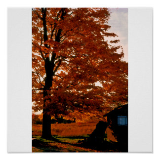 Autumn Glory red Poster/Print Poster