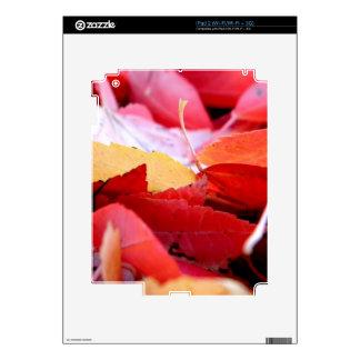 Autumn Glow iPad 2 Skin