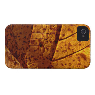 Autumn Gold Leaf iPhone 4 Case