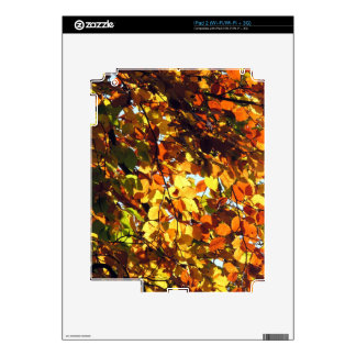AUTUMN GOLD SKIN FOR THE iPad 2