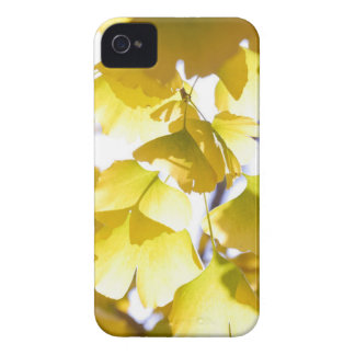 Autumn golden leaves iPhone 4 cover