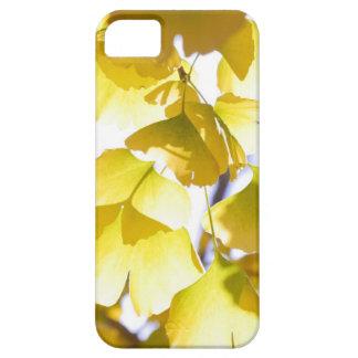 Autumn golden leaves iPhone SE/5/5s case