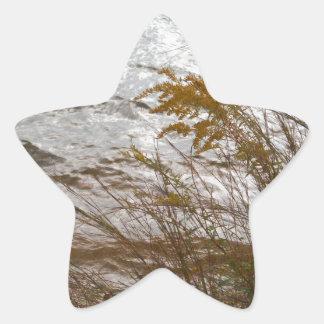Autumn Golden Rod against cool gray Lake Arrowhead Star Sticker