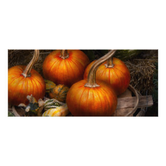 Autumn - Gourd - Pumpkins and some other things Custom Rack Cards