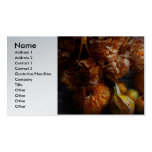 Autumn - Gourd - Still life with Gourds Double-Sided Standard Business Cards (Pack Of 100)
