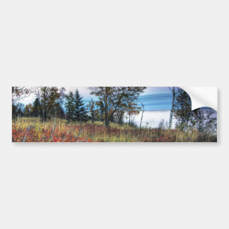 Autumn Grass Bumper Sticker
