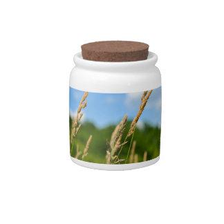 Autumn Grass Landscape Candy Jar