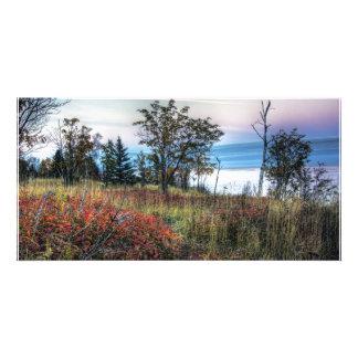 Autumn Grass Custom Photo Card