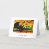 Autumn Greeting Card Design
