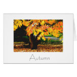 Autumn Greeting Card Design