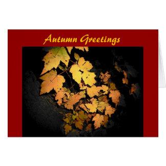 Autumn Greetings-Card Card