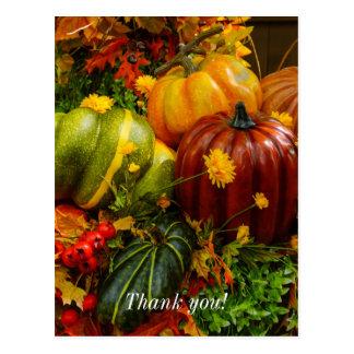 Autumn Grouping Postcard