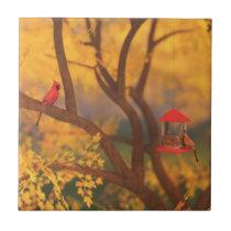 Autumn Guardian Decorative Tile / Trivet