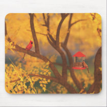 Autumn Guardian Mousepad
