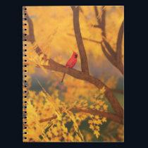 Autumn Guardian Notebook