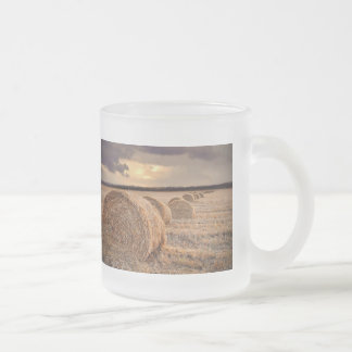 Autumn Harvest Hayfield Photography Coffee Cup 10 Oz Frosted Glass Coffee Mug