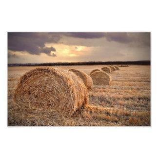 Autumn Harvest Hayfield Photography Photo Print