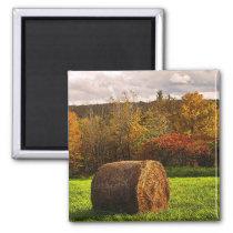 Autumn Harvest Magnet
