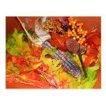 Autumn Harvest Postcards