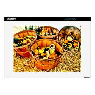 Autumn Harvest Pumpkins & Gourds Thanksgiving Laptop Skin
