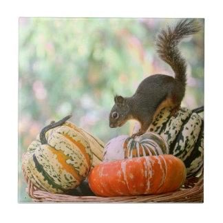Autumn Harvest Squirrel Tile
