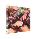 Autumn Harvest Wrapped Canvas Stretched Canvas Prints