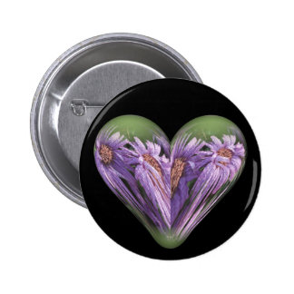 autumn heart asters with dew pinback button