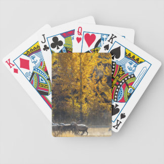 Autumn Herding Bicycle Playing Cards