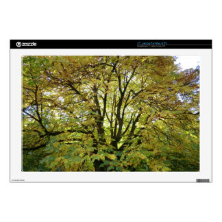 """Autumn Horse Chestnut Tree Decal For 17"""" Laptop"""
