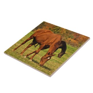 Autumn Horses Ceramic Tile