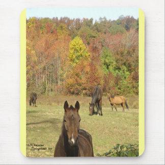 Autumn Horses Mousepad