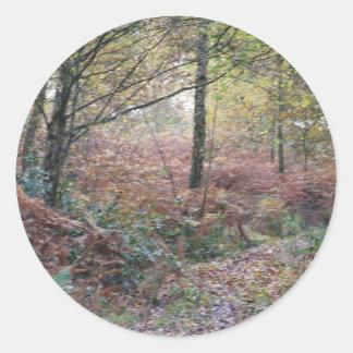 Autumn Impressions Classic Round Sticker