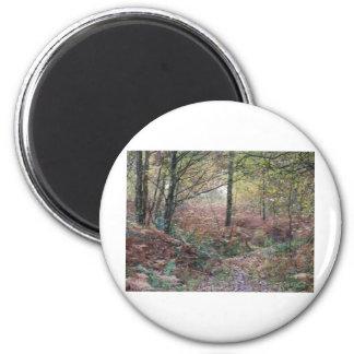 Autumn Impressions Magnet