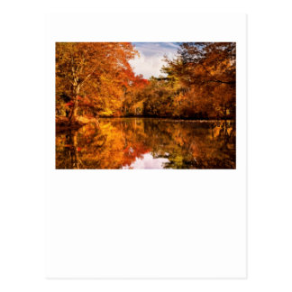 Autumn - In a dream I had Postcard