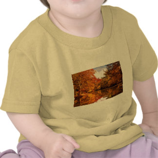 Autumn - In a dream I had Tshirt