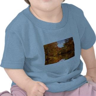 Autumn - In a dream I had Tee Shirts