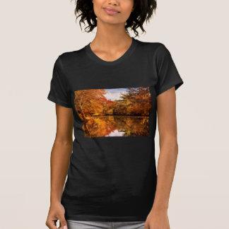 Autumn - In a dream I had Tshirts